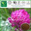 100% Natural Red Clover Extract the best matrial,.5%--80% Isoflavones by HPLC