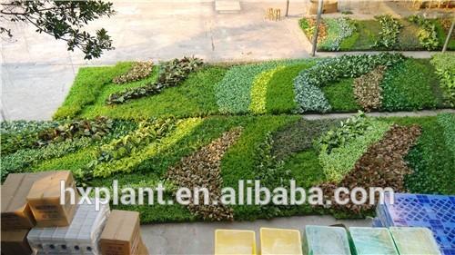 Verticale Tuin Prijs Verticale Tuin Plantenbak