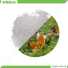 animal feed producers Bacillus subtilis/2014 new products/subtilis bacillus licheniformis made in china
