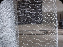 Anping Hexagonal Wire Mesh for Chicken