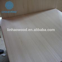 buy Paulownia wood lumber price