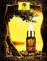 arganmidas aceite esencial puro