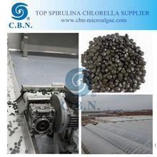 Quality Spirulina Tablet for export