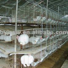 Rabbit House/ Rabbit Hutch/ Rabbit Cage