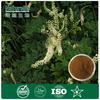 GMP&KOSHER Black cohosh extract 2.5~5% Triterpene glycosides best price