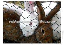hexagonal wire mesh rabbit cage chicken fence(ISO 9001)