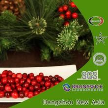 Biggest Supplier of Cranberry Fruit P.E. U.S.A Imported Vaccinium Macrocarpon Origin Kosher Halal Certified
