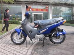 2014 Hot Sale BIZ Model 110cc /120CC/125cc Engine Brazil Motorcycle