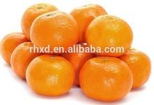 Kinnow Citrus / Mandarin / Navel Valencia Orange / Tangerines
