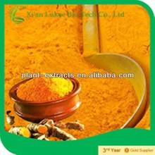 Organic Chinese Herb Curcumin Turmeric Powder Price