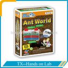 funny science toy for observe ant behavior
