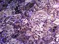 geoda de amatista de los compradores de mármol para el contador superior de la pared y suelo