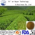 Chá verde 9370A / verde folhas de chá / alta qualidade folhas de chá
