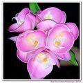 реальные прикосновение pu фаленопсис орхидеи оптовая искусственные цветы мини фаленопсис кучу искусственные цветы орхидеи