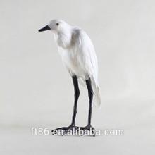 Realista canário pelicano aves exóticas para venda