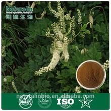 Triterpene Glycosides 8% HPLC/Black Cohosh Extract