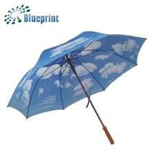 30 inches 8 ribs digital printed unique golf umbrella