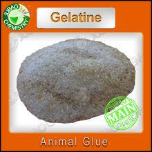 Jubao chemical China suppliers animal glue or kosher fish gelatin buy CAS NO 9000-70-8