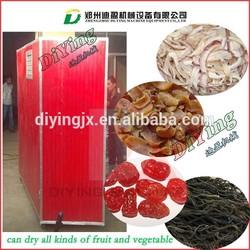 home food drying machine/food drying machine