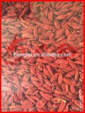 Hot sale ningxia goji berry 500 per 50g,dried goji berries,goji berry