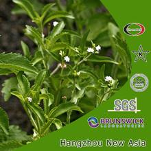 100% Natural International Price For Stevia Steviol Glycosides 90% 95% Rebaudioside A (Reb A) 97% HPLC