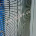 la ventana de hierro parrilla con diseños de nuevo tipo