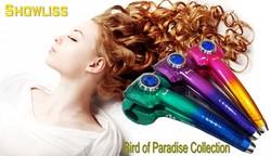 Hot Selling New Design Hair Curler Hair Home Appliance