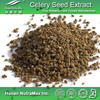 100% Natural Celery Seed Extract/Celery Seed Extract Powder