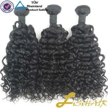 Raw Unprocessed Wholesale Virgin Human Hair Distributor Brazillian Curly Hair