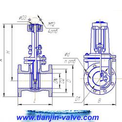 Wedge gate valve,titanium alloy non-rising stem gate valve