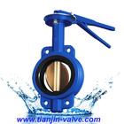 Wedge gate valve,flange api 5000 butterfly valve