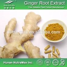 Dried Ginger Extract/Dried Ginger Extract Powder/Zingiber Extract