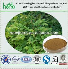 Cimicifuga racemosa extract /BLACK Cohosh Extract (triterpenoid saponins 2.5%-5%)