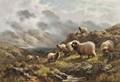 100% moutons. faits à la main peinture à l'huile sur toile pour le salon