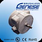 55W Three Phase ball bearing Brushless DC Motor