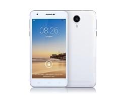 cheap 5 inch quad core phone smart dual sim