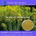 Woundwort estratto, 100% puro naturale, qualità garantita