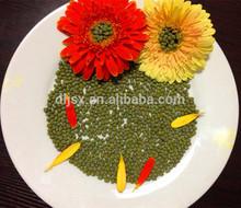 New Crop Unpolished Green Mung Beans