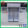 vidrio de la puerta del refrigerador frreezer pecho congelador profundo precio