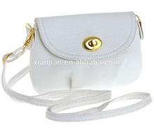 Spring Mini bolso de bandolera in Cross Body Bag (BZL869)