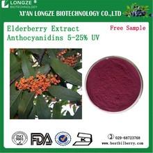 Sambucus Williamsii Hance Herb Extract Elderberry Extract Powder Bulk