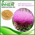 Melhor qualidade natural extrair silybum marianum/milk thistle sementes/milk thistle extrato