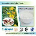 Kosher la fábrica suministra directamente jerusalén alcachofa 90% inulina