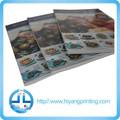 Catálogo, y brochuer libro personalizado servicio de impresión offset