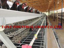 chicken breeding cages for nigerian farm