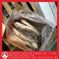 ประเทศจีนมีโรงงานปลาดุกผู้ค้าส่ง