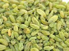 Golden raisin ferrero rocher chocolate price medjool dates food price list