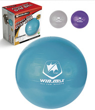 anti burst exercise stability ball with pump exercise stability ball