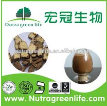 Tongkat Ali Extract/Tongkat Ali Root Extract 200 1/Tongkat Ali Extract Powder