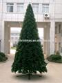 2015 levou árvore chrismas dom